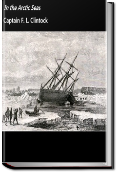 In the Arctic Seas by Francis Leopold McClintock