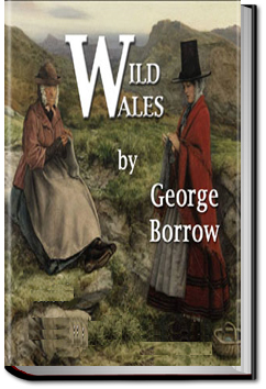 Wild Wales by George Henry Borrow