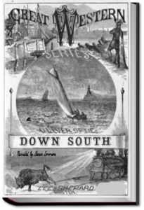 Down South, or Yacht Adventures in Florida by Oliver Optic